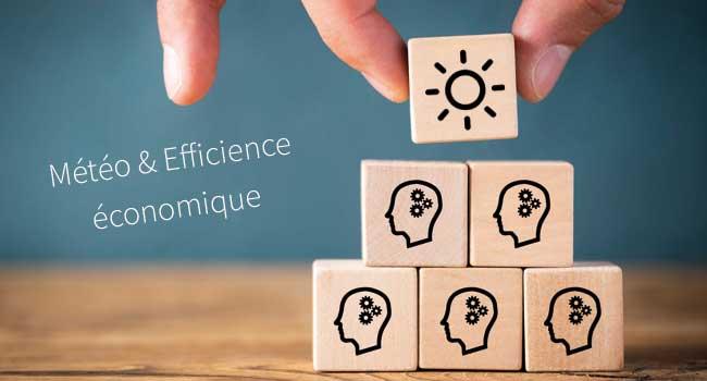 météo et efficience économique